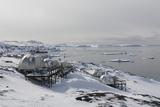Igloos Outside the Arctic Hotel in Ilulissat  Greenland  Denmark  Polar Regions