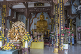 Phap Lam Pagoda  Danang  Vietnam  Indochina  Southeast Asia  Asia