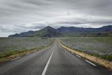 Empty Road  Iceland  Polar Regions
