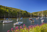 Solva Harbour  Pembrokeshire  Wales  United Kingdom