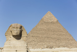 Sphinx and Pyramid of Chephren  the Giza Pyramids  Giza  Egypt  North Africa  Africa