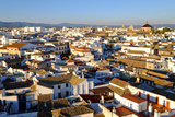 View of Cordoba from the Mezquita Cathedral Bell Tower  Cordoba  Andalucia  Spain