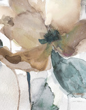 Watercolor Poppy I Reproduction d'art par Carol Robinson