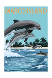 Marco Island - Dolphins Jumping