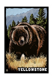 Bear Family - Grizzly Bear Scratchboard