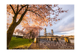 Portland  Oregon - Cherry Blossoms and Waterfront