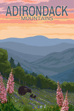 Adirondack Mountains  New York - Bears and Spring Flowers