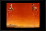 The Elephants  c1948