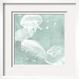Spa Jellyfish III