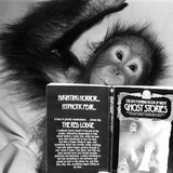 An Orangutan reading ghost stories