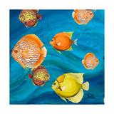 Aquatic Sea Life II