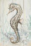 Antique Sea Horse II Reproduction d'art par Patrcia Pinto
