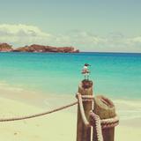 Island Vacation II