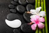 Spa Background of White  Pink Hibiscus Flower  Symbol Yin Yang and Natural Bamboo on Zen Basalt Sto