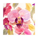 Radiant Orchid Square II