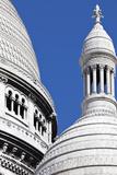 Detail of the Domes of the Sacre-Coeur Basilica  Montmartre  Paris  France