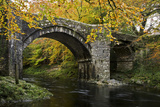 Autumn at Holne Bridge  Dartmoor  England
