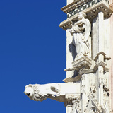 Statue of a Man and a Lion Gargoyle  Architectural Detail  Siena  Italy