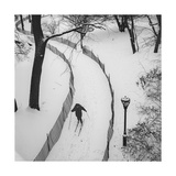 Central Park Cross Country Skier
