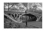 Central Park Gothic Bridge