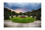 Topiari Shrubs in Schonbrunn Palace Garden