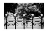 Capitol Stars 2