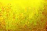City of Joy 2013 Giclée premium par Rabi Khan