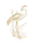 Flamingo 2 Golden White