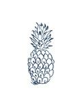 Navy Pineapple