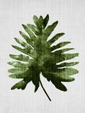 Tropical Leaf 2