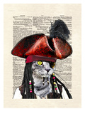 Cat Sparrow