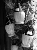 Display of Local Wine for Sale  Siena  Tuscany  Italy