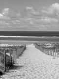 Cape Ferret  Basin d'Arcachon  Gironde  Aquitaine  France