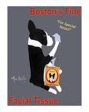 Boston's Fine Facial Tissue