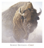Chief (detail) Reproduction d'art par Robert Bateman