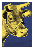 Cow  1971 (blue & yellow)