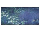 Water Lilies: Morning
