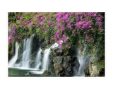 Floral Falls
