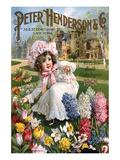 Hederson Autumn Bulbs New York