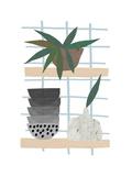 Shelf Life Giclée par Seventy Tree
