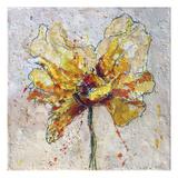 Yellow Poppy on White 2