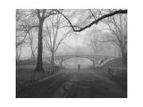 Central Park Gothic Bridge Walker - New York City Landmarks