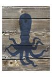 Coastal Squid Reproduction d'art par Melody Hogan