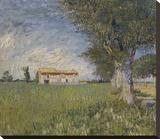 Farmhouse in a Wheat Field  1888