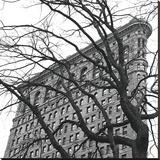 Flatiron with Tree (b/w) (detail)