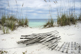 Sand Fence and Sea Oats at Florida Beach