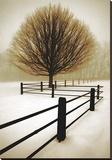 Solitude Tableau sur toile par David Lorenz Winston