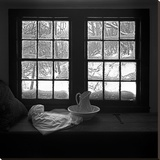 Window Seat Blizzard