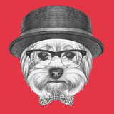 Portrait of Hipster Dog Yorkshire Terrier with Sunglasses Hat and Bow Tie Hand Drawn Illustration