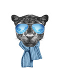 Portrait of Panther with Mirror Sunglasses and Scarf Hand Drawn Illustration